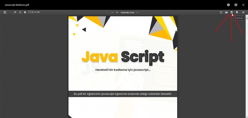 javascript pdf kitap download